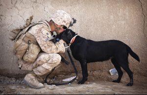veterans special pension